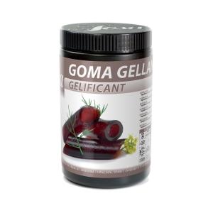 GOMMA GELLAN 100GR