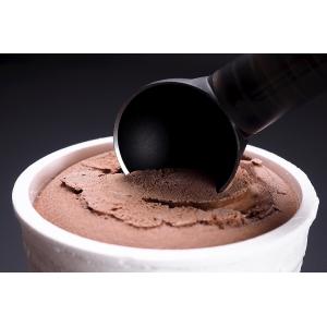 Paletta per gelato con bordo riscaldato ScoopTHAT Seealto