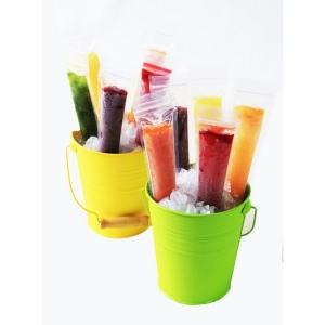 Sacchetti per Ghiaccioli Ice Pop Molds